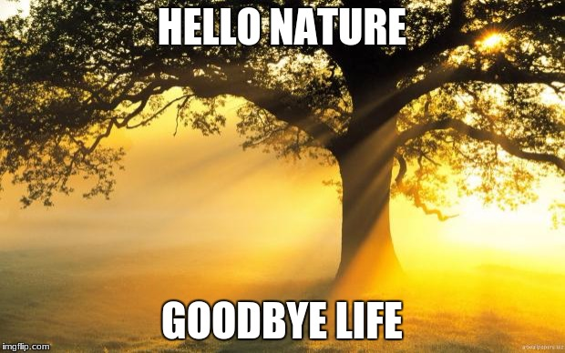nature | HELLO NATURE GOODBYE LIFE | image tagged in nature | made w/ Imgflip meme maker