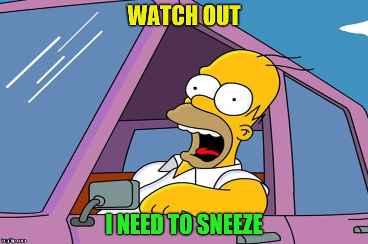 WATCH OUT I NEED TO SNEEZE | made w/ Imgflip meme maker