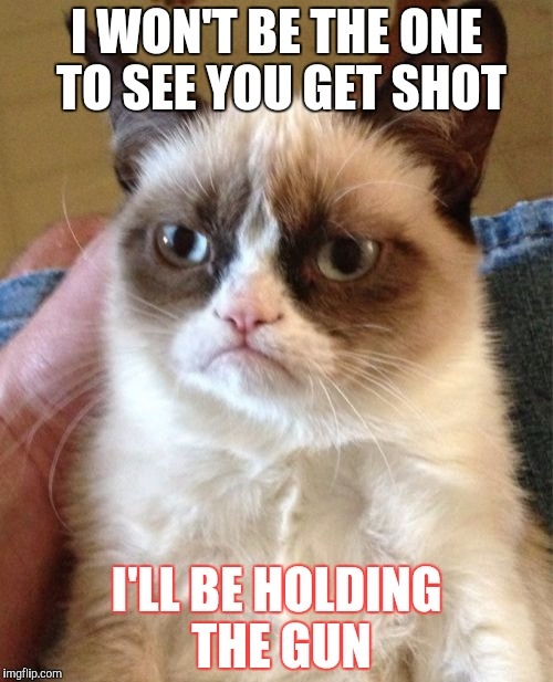 Grumpy Cat Meme | I WON'T BE THE ONE TO SEE YOU GET SHOT I'LL BE HOLDING THE GUN | image tagged in memes,grumpy cat | made w/ Imgflip meme maker