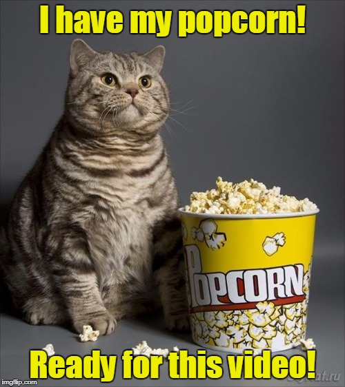 Cat eating popcorn | I have my popcorn! Ready for this video! | image tagged in cat eating popcorn | made w/ Imgflip meme maker