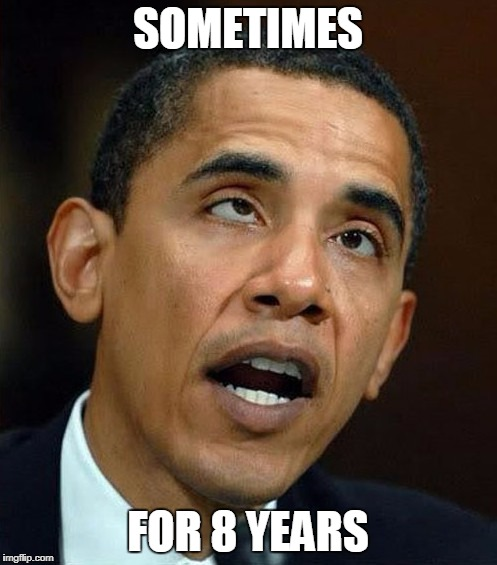 partisanship | SOMETIMES FOR 8 YEARS | image tagged in partisanship | made w/ Imgflip meme maker