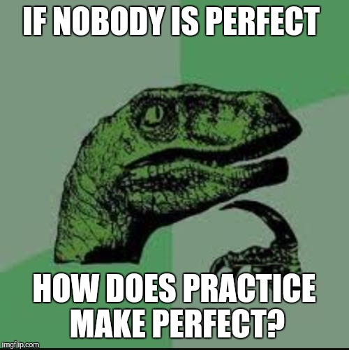 Philosiraptor | IF NOBODY IS PERFECT HOW DOES PRACTICE MAKE PERFECT? | image tagged in philosoraptor,nobody's perfect | made w/ Imgflip meme maker