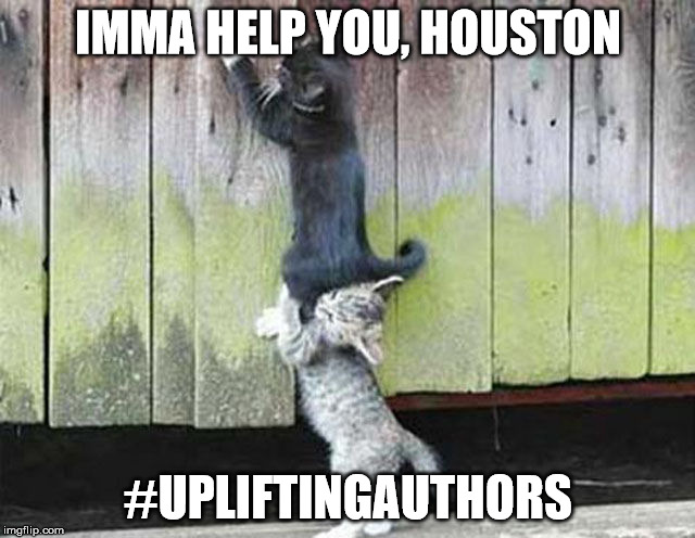 helping hand | IMMA HELP YOU, HOUSTON #UPLIFTINGAUTHORS | image tagged in helping hand | made w/ Imgflip meme maker