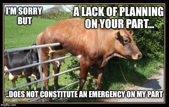 Yes, the grass was in fact greener on the other side | I'M SORRY BUT A LACK OF PLANNING ON YOUR PART... ..DOES NOT CONSTITUTE AN EMERGENCY ON MY PART | image tagged in cow,farm,emergency,planning,cows,fence | made w/ Imgflip meme maker