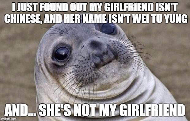 Awkward Moment Sealion Meme | I JUST FOUND OUT MY GIRLFRIEND ISN'T CHINESE, AND HER NAME ISN'T WEI TU YUNG AND... SHE'S NOT MY GIRLFRIEND | image tagged in memes,awkward moment sealion | made w/ Imgflip meme maker