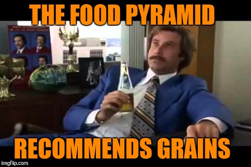 THE FOOD PYRAMID RECOMMENDS GRAINS | made w/ Imgflip meme maker