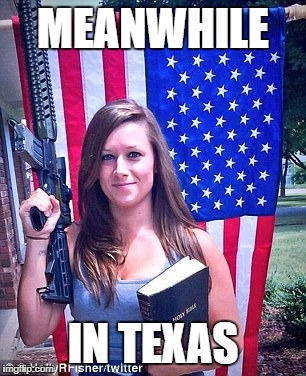 I really am sorry, but I just couldn't resist. | MEANWHILE IN TEXAS | image tagged in murica,meanwhile in,texas,i'm sorry,american flag,america | made w/ Imgflip meme maker