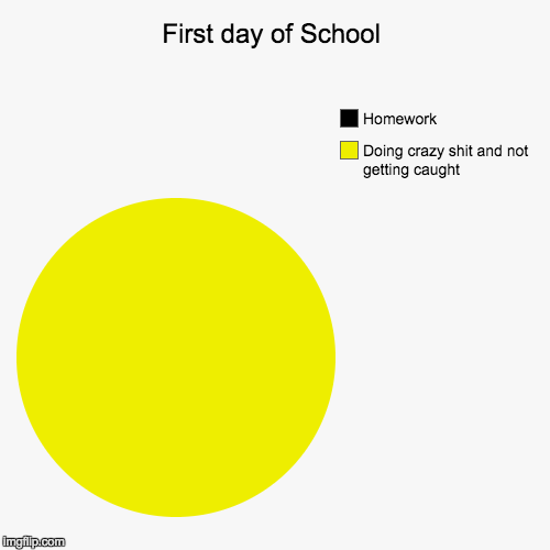 First day of School | Doing crazy shit and not getting caught, Homework | image tagged in funny,pie charts | made w/ Imgflip pie chart maker