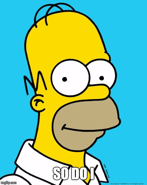 Homer Approval  | SO DO I | image tagged in homer approval | made w/ Imgflip meme maker