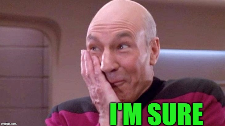 picard grin | I'M SURE | image tagged in picard grin | made w/ Imgflip meme maker