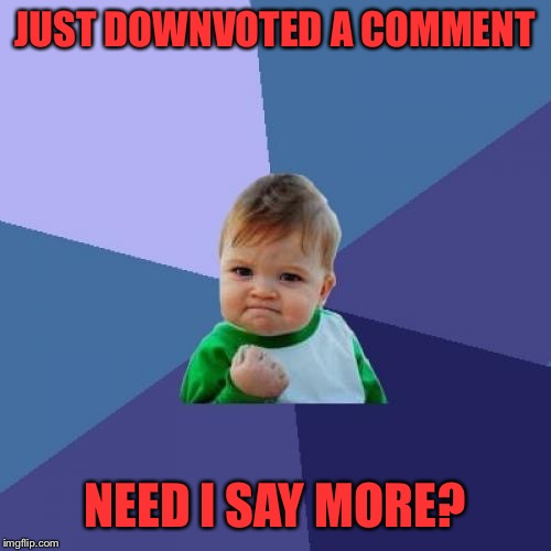 Don't think less of this one: it was a picture of a dog | JUST DOWNVOTED A COMMENT NEED I SAY MORE? | image tagged in memes,success kid | made w/ Imgflip meme maker