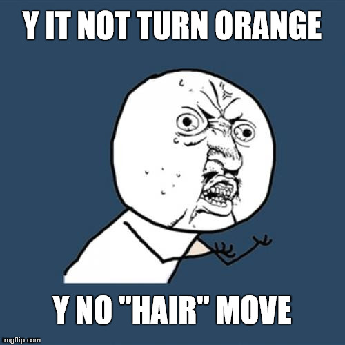 "Y U No Meme | Y IT NOT TURN ORANGE Y NO ""HAIR"" MOVE 