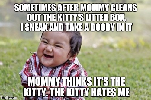 Evil Toddler Meme | SOMETIMES AFTER MOMMY CLEANS OUT THE KITTY'S LITTER BOX, I SNEAK AND TAKE A DOODY IN IT MOMMY THINKS IT'S THE KITTY. THE KITTY HATES ME | image tagged in memes,evil toddler | made w/ Imgflip meme maker