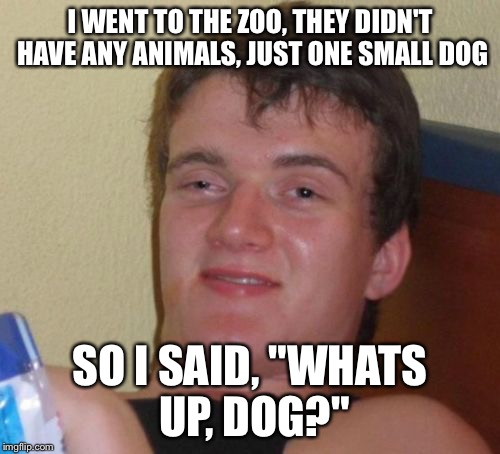 "10 Guy Meme | I WENT TO THE ZOO, THEY DIDN'T HAVE ANY ANIMALS, JUST ONE SMALL DOG SO I SAID, ""WHATS UP, DOG?"" 