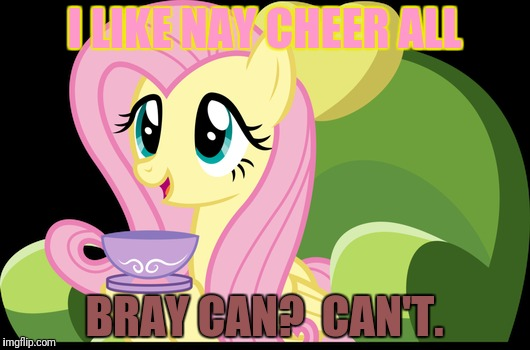I LIKE NAY CHEER ALL BRAY CAN?  CAN'T. | made w/ Imgflip meme maker
