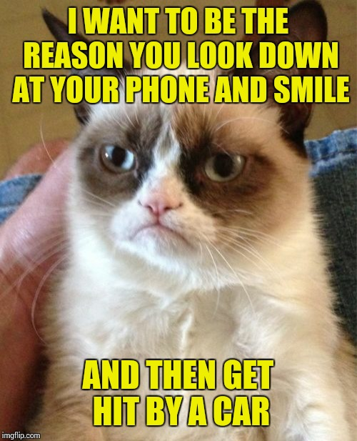 Grumpy Cat Meme | I WANT TO BE THE REASON YOU LOOK DOWN AT YOUR PHONE AND SMILE AND THEN GET HIT BY A CAR | image tagged in grumpy cat,sir_unknown,lol,dank memes,funny | made w/ Imgflip meme maker
