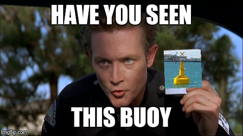 Have you seen this buoy | HAVE YOU SEEN THIS BUOY | image tagged in terminator 2,photoshop | made w/ Imgflip meme maker