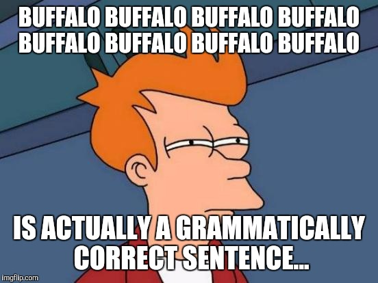 Gotta Love English that way. | BUFFALO BUFFALO BUFFALO BUFFALO BUFFALO BUFFALO BUFFALO BUFFALO IS ACTUALLY A GRAMMATICALLY CORRECT SENTENCE... | image tagged in memes,grammar,buffalo | made w/ Imgflip meme maker