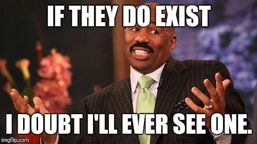 Steve Harvey Meme | IF THEY DO EXIST I DOUBT I'LL EVER SEE ONE. | image tagged in memes,steve harvey | made w/ Imgflip meme maker