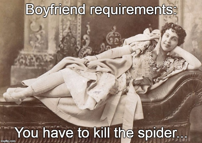 Boyfriend requirements... | Boyfriend requirements: You have to kill the spider... | image tagged in kill,spider | made w/ Imgflip meme maker