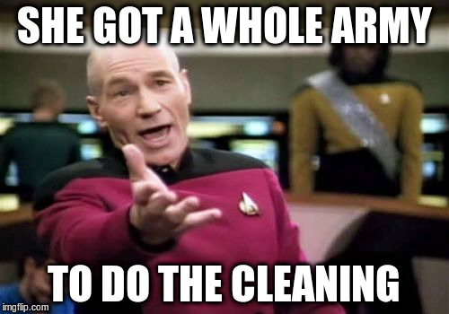 Picard Wtf Meme | SHE GOT A WHOLE ARMY TO DO THE CLEANING | image tagged in memes,picard wtf | made w/ Imgflip meme maker