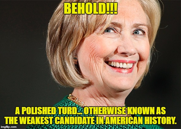 A polished turd | BEHOLD!!! A POLISHED TURD... OTHERWISE KNOWN AS THE WEAKEST CANDIDATE IN AMERICAN HISTORY. | image tagged in hilary clinton | made w/ Imgflip meme maker