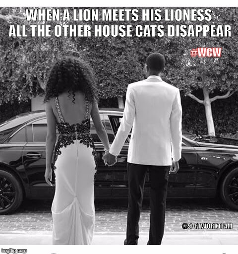 woman crush wednesday | WHEN A LION MEETS HIS LIONESS ALL THE OTHER HOUSE CATS DISAPPEAR #WCW @SOFTWORKTEAM | image tagged in i love you,prom,relationships,lion,lioness | made w/ Imgflip meme maker