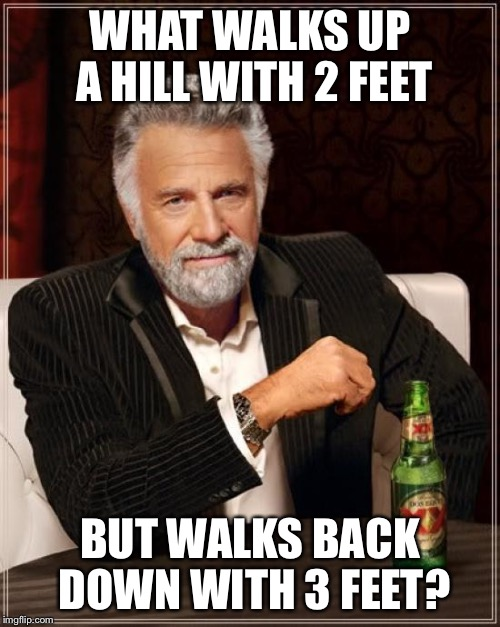 The Most Interesting Man In The World Meme | WHAT WALKS UP A HILL WITH 2 FEET BUT WALKS BACK DOWN WITH 3 FEET? | image tagged in memes,the most interesting man in the world | made w/ Imgflip meme maker