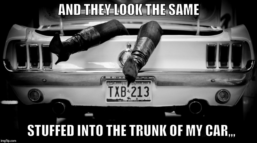 The Hooker in the Trunk of My Car | AND THEY LOOK THE SAME STUFFED INTO THE TRUNK OF MY CAR,,, | image tagged in the hooker in the trunk of my car | made w/ Imgflip meme maker