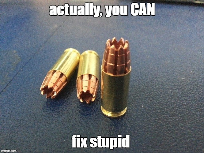 Double tappin' | actually, you CAN fix stupid | image tagged in you can't fix stupid,ammo | made w/ Imgflip meme maker