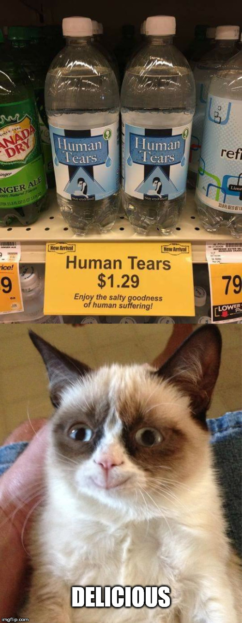 DELICIOUS | image tagged in grumpy cat,tears | made w/ Imgflip meme maker
