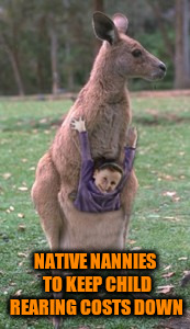 NATIVE NANNIES TO KEEP CHILD REARING COSTS DOWN | made w/ Imgflip meme maker
