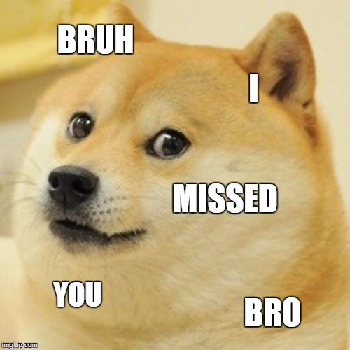 Doge Meme | BRUH I MISSED YOU BRO | image tagged in memes,doge | made w/ Imgflip meme maker