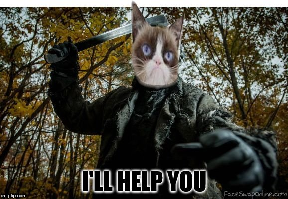 grumpy cat jason | I'LL HELP YOU | image tagged in grumpy cat jason | made w/ Imgflip meme maker