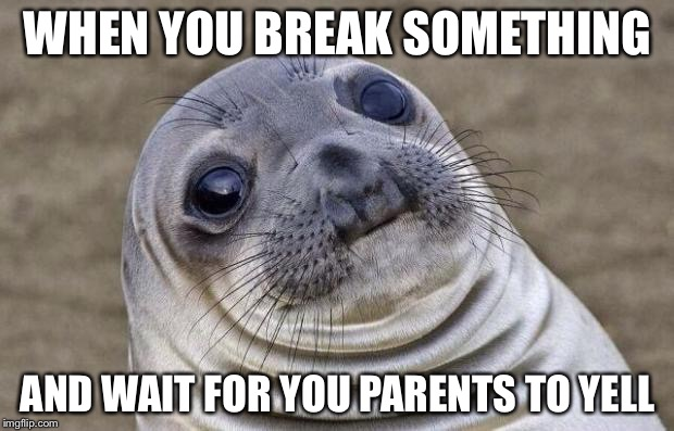 Awkward Moment Sealion Meme | WHEN YOU BREAK SOMETHING AND WAIT FOR YOU PARENTS TO YELL | image tagged in memes,awkward moment sealion | made w/ Imgflip meme maker