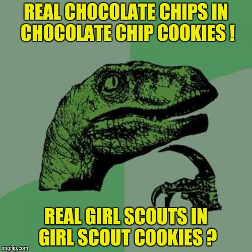 Philosoraptor Meme | REAL CHOCOLATE CHIPS IN CHOCOLATE CHIP COOKIES ! REAL GIRL SCOUTS IN GIRL SCOUT COOKIES ? | image tagged in memes,philosoraptor | made w/ Imgflip meme maker