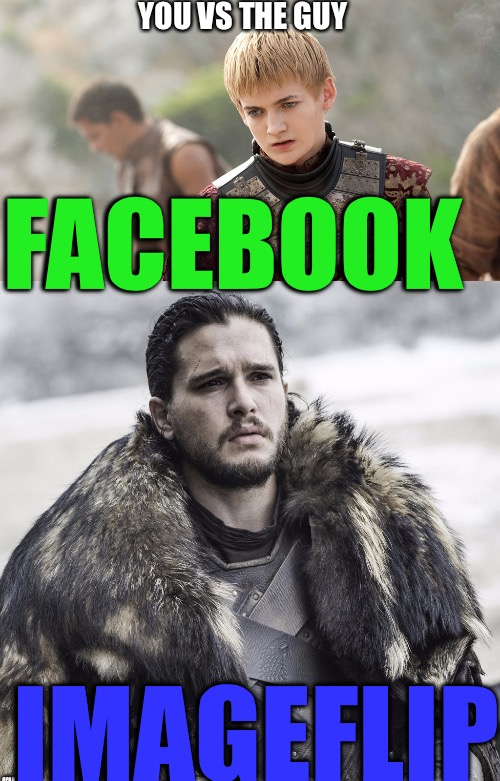 Imageflippers UNITE! | FACEBOOK IMAGEFLIP YOU VS THE GUY | image tagged in youvstheguy,funny,memes,game of thrones,animals,disaster girl | made w/ Imgflip meme maker