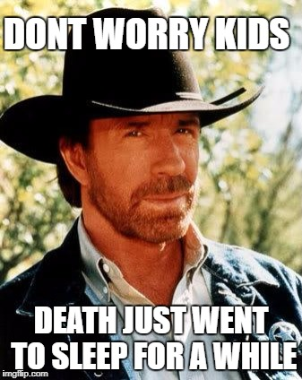 Chuck Norris Meme | DONT WORRY KIDS DEATH JUST WENT TO SLEEP FOR A WHILE | image tagged in memes,chuck norris | made w/ Imgflip meme maker