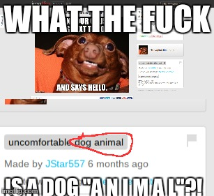 "It took me a full damn year to notice. | WHAT THE F**K IS A DOG ""A N I M A L""?! 