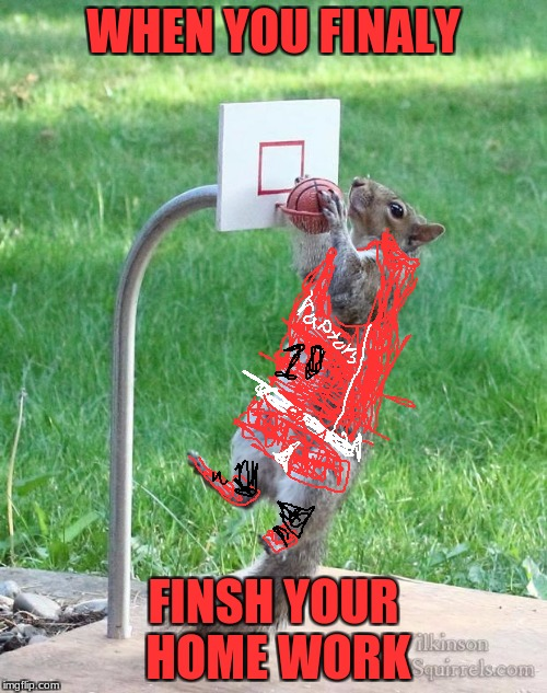 Squirrel basketball | WHEN YOU FINALY FINSH YOUR HOME WORK | image tagged in squirrel basketball | made w/ Imgflip meme maker