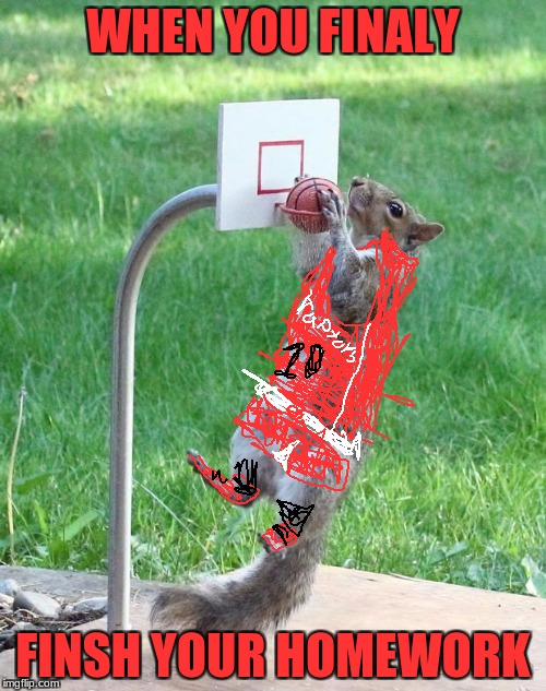 Squirrel basketball | WHEN YOU FINALY FINSH YOUR HOMEWORK | image tagged in squirrel basketball | made w/ Imgflip meme maker