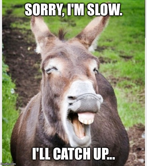Laughing ass | SORRY, I'M SLOW. I'LL CATCH UP... | image tagged in laughing ass | made w/ Imgflip meme maker