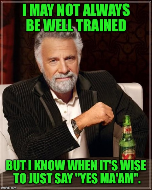 "The Most Interesting Man In The World Meme | I MAY NOT ALWAYS BE WELL TRAINED BUT I KNOW WHEN IT'S WISE TO JUST SAY ""YES MA'AM"". 
