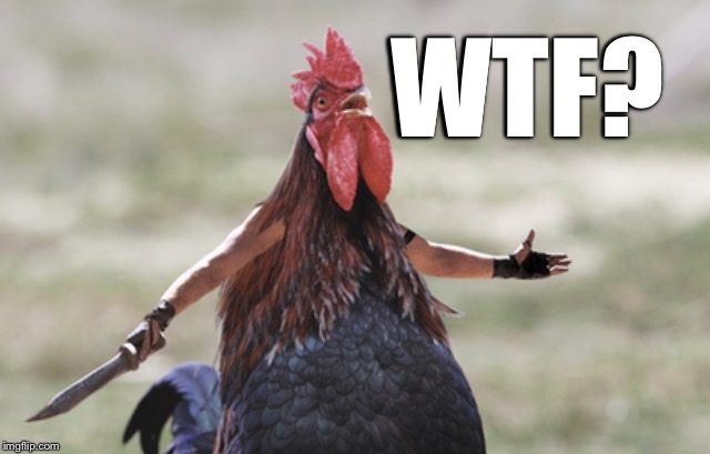 Angry chicken | WTF? | image tagged in angry chicken | made w/ Imgflip meme maker