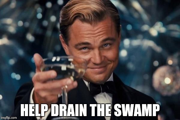 Leonardo Dicaprio Cheers Meme | HELP DRAIN THE SWAMP | image tagged in memes,leonardo dicaprio cheers | made w/ Imgflip meme maker