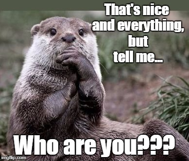 That's nice and everything, but tell me... Who are you??? | image tagged in questioning otter | made w/ Imgflip meme maker