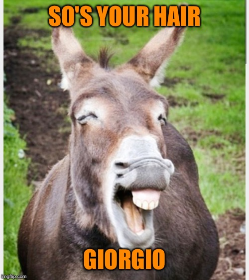 Laughing ass | SO'S YOUR HAIR GIORGIO | image tagged in laughing ass | made w/ Imgflip meme maker