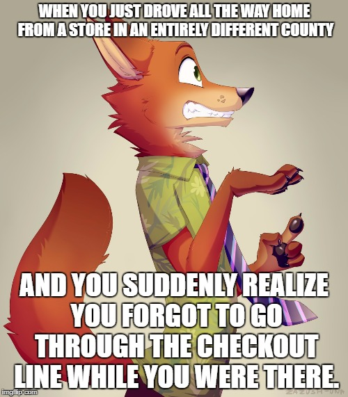 OH $#!% | WHEN YOU JUST DROVE ALL THE WAY HOME FROM A STORE IN AN ENTIRELY DIFFERENT COUNTY AND YOU SUDDENLY REALIZE YOU FORGOT TO GO THROUGH THE CHEC | image tagged in zootopia fox | made w/ Imgflip meme maker