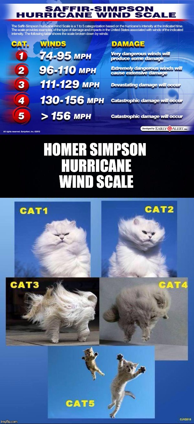 There's two different Simpson Hurricane Wind Scales, know the difference. | HOMER SIMPSON HURRICANE WIND SCALE | image tagged in saffir-simpson,homer simpson,hurricane,wind,scales | made w/ Imgflip meme maker