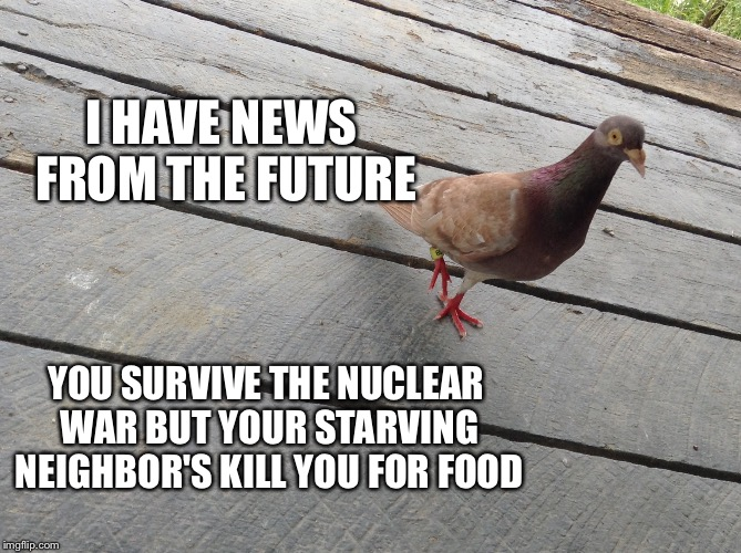 Bad News Pigeon | I HAVE NEWS FROM THE FUTURE YOU SURVIVE THE NUCLEAR WAR BUT YOUR STARVING NEIGHBOR'S KILL YOU FOR FOOD | image tagged in bad news pigeon,nuclear war | made w/ Imgflip meme maker